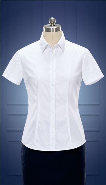 女短袖正规领衬衫  货号:NCS06