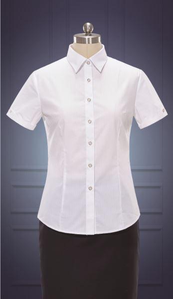 女短袖正规领衬衫  货号:NC507