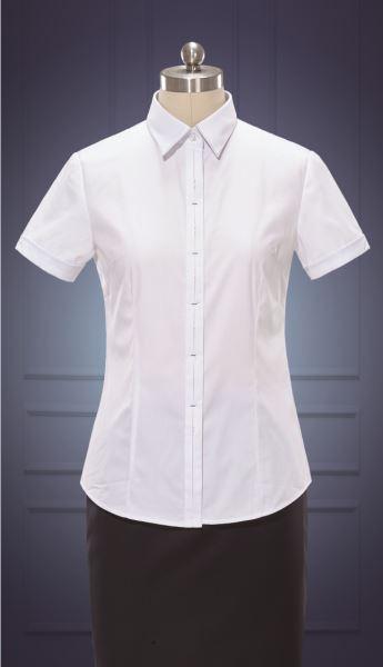 女短袖正规领衬衫  货号:NC509